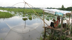 LAO wetland fishing SG_459.jpg